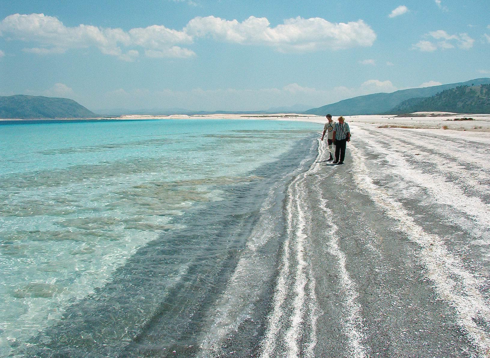 În căutarea dipterelor pe malul Lacului Salda