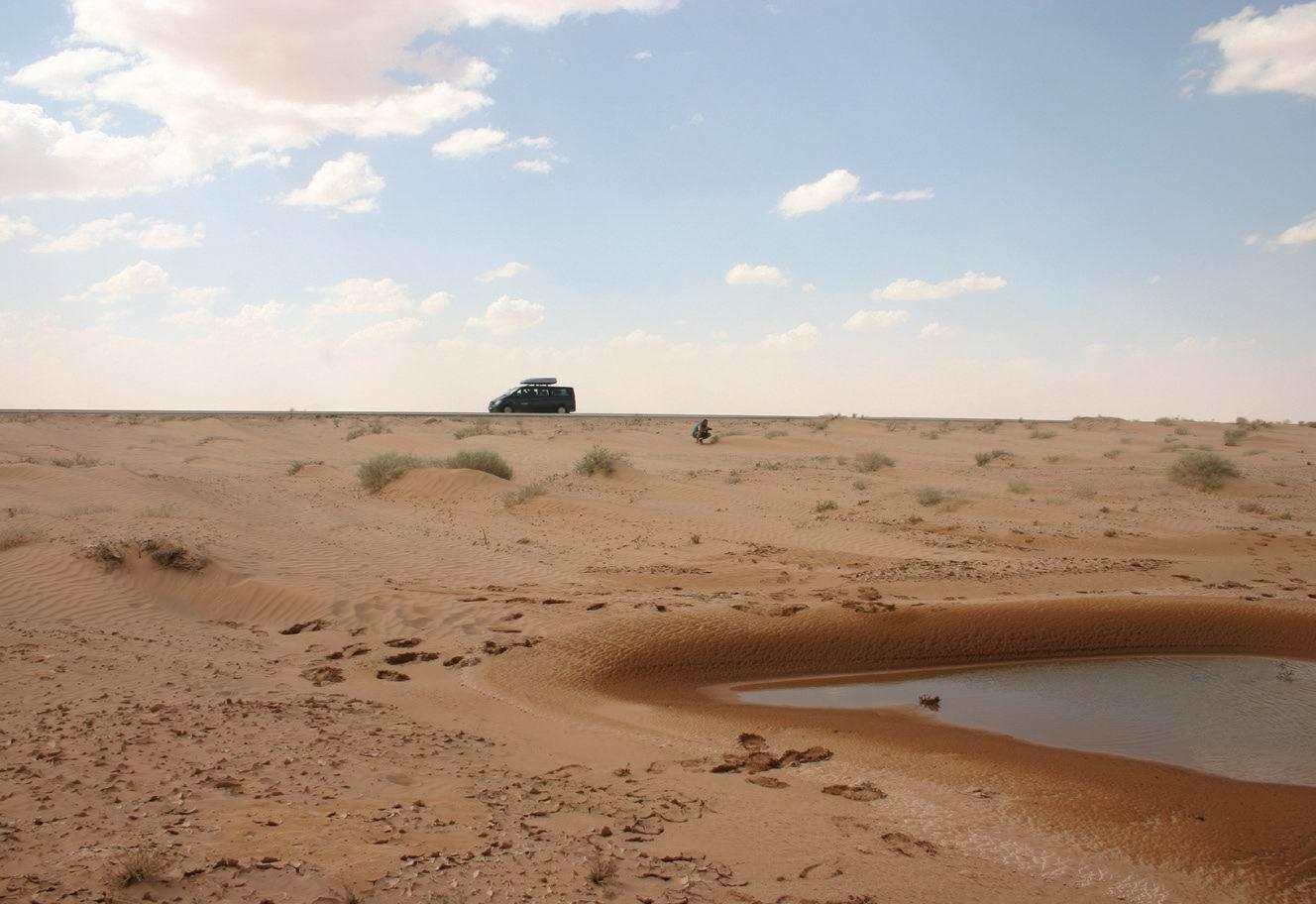 Asptect din deșertul sirian
