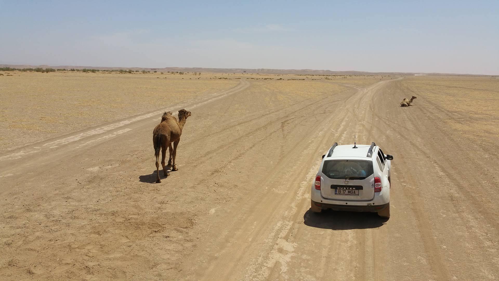 Drumul prin Oued Draa, dintre Foum Zguid și Mhamid (sud-estul Marocului)