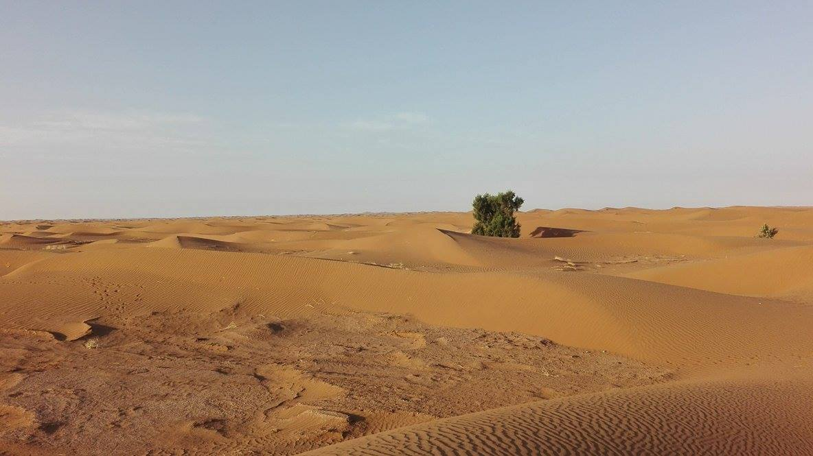 Deșertul în apropiere de Mhamid