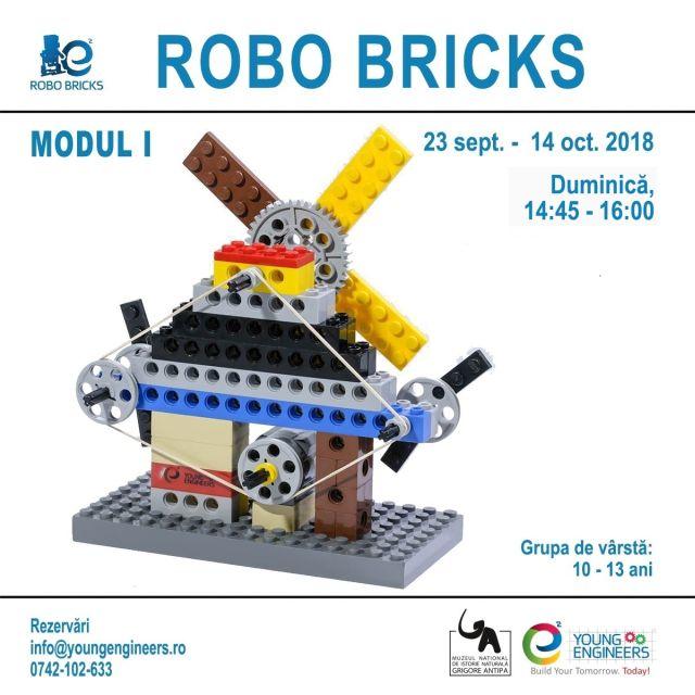 Robo Bricks